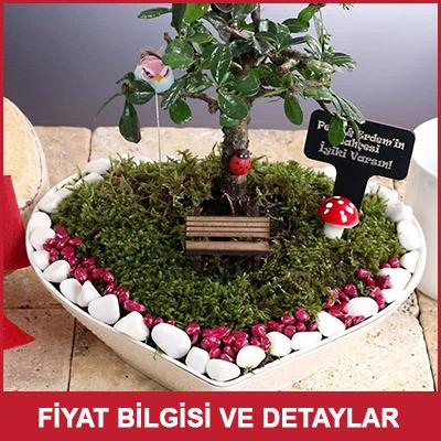 Sürpriz Yıldönümü Hediyesi Minyatür Bahçe