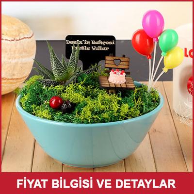Arkadaşa Doğum Günü Hediyesi Balonlu Minyatür Bahçe