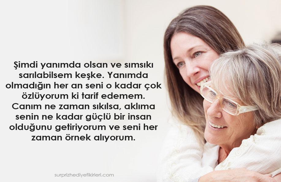 anne özlemi şiiri sözleri