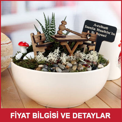 Avukata yeni iş hediyesi canlı minyatür bahçe