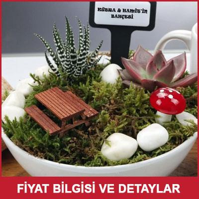 Doktora Yeni İş Hediyesi Minyatür Bahçe