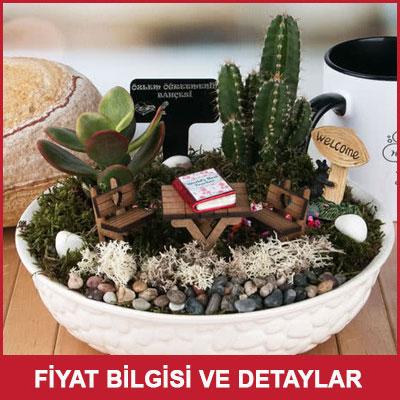 Öğretmenler Günü Hediyesi Minyatür Bahçe